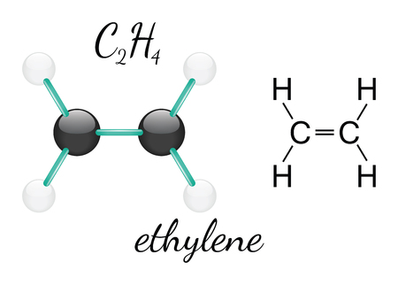 C2H4 ethylene 3d molecule isolated on white