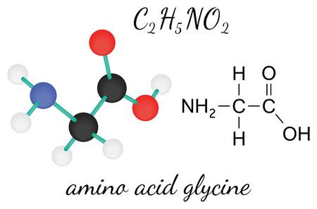 glycine: C2H5NO2 glycine 3d amino acid molecule isolated on white
