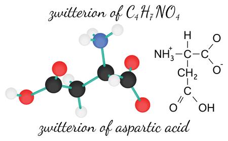 acido: C4H7NO4 ion híbrido de molécula de ácido amino ácido aspártico 3d aislado en blanco