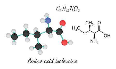 3d nitrogen: C6H13NO2 amino acid Isoleucine molecule isolated on white Illustration