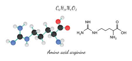C6H14N4O2 Aminosäure Arginin-Molekül isoliert auf weiß