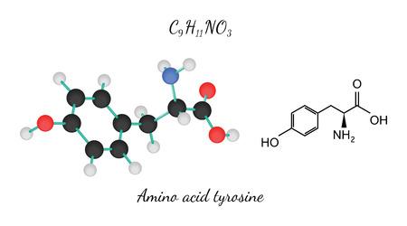tyr: C9H11NO3 amino acid Tyrosine molecule isolated on white