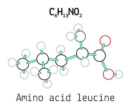 leu: C6H13NO2 amino acid Leucine molecule isolated on white Illustration