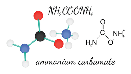 ammonium: NH2COONH4 ammonium carbamate 3d molecule isolated on white Illustration