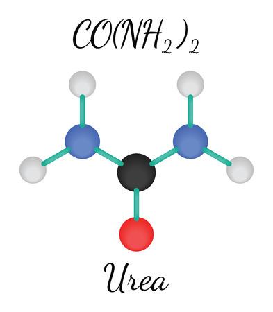 urea: CH4N2O urea 3d molecule isolated on white