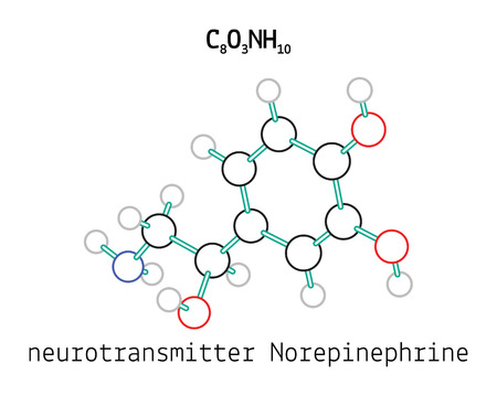 norepinephrine: C8O3NH10 Norepinephrine 3d molecule isolated on white