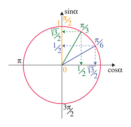 Trigonometric unit circle with trigonometrical functions on white Illustration