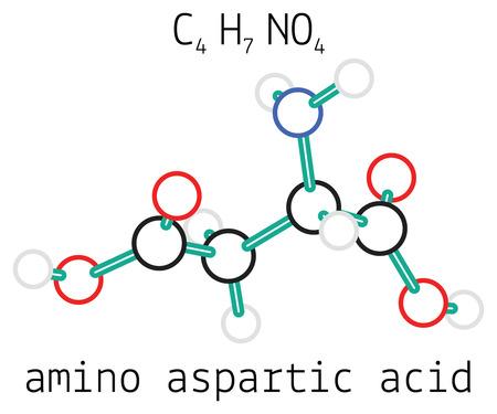acido: C4H7NO4 aspártico 3d molécula de ácido aminoácido aislado en blanco Vectores