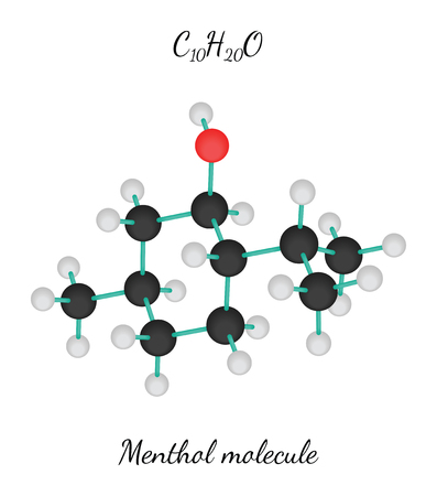 menthol: C10H20O Menthol 3d molecule isolated on white