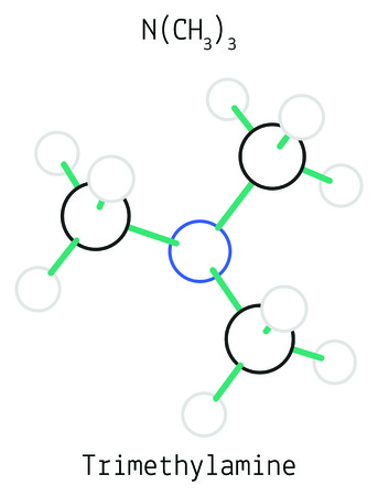 Trimethylamine C3H9N molecule isolated on white in vector Illustration