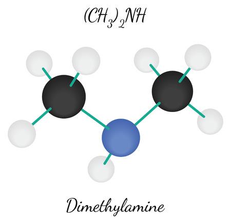 amine: Dimethylamine C2H7N molecule isolated on white in vector Illustration