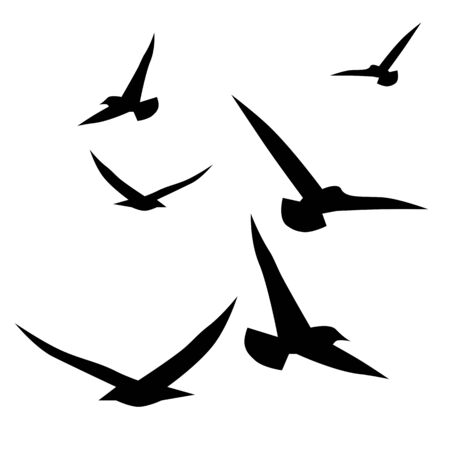Flying birds set, vector silhouette, black collection