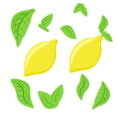 Lemon and leaves set, vector illustration, isolated on the white background