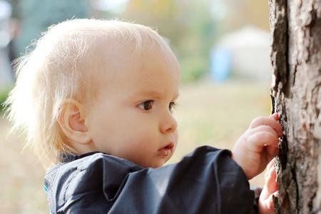 bebé hermoso que la exploración de la corteza del árbol, retrato al aire libre
