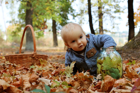 contended: Stylish handsome toddler sitting on the ground near the wicker basket in the autumn park Stock Photo