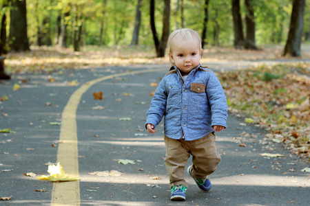toddler walking: Handsome toddler walking forward along the road in the autumn park