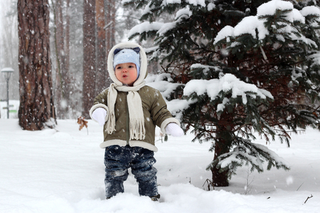 skeptical: Toddler boy in warm coat and a hat with ears with skeptical face having a fun in the winter forest, family winter concept Stock Photo