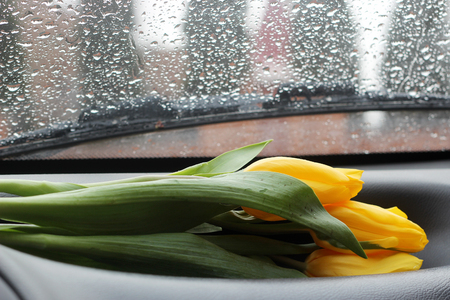 View through the dropped car window to city street, a bunch of yellow tulips is on the car torpedo, raining, spring or autumn outdoor, concept