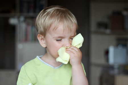 Toddler boy with sick look blowing her nose in the napkin, health and care concept, indoor portrait