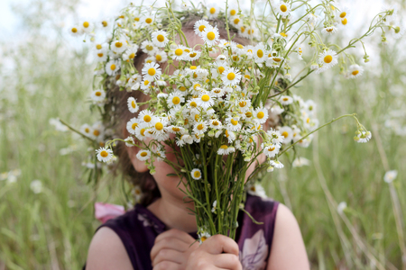 Cute funny little girl in wildflower wreath is hiding at a huge bouquet of white flowers in chamomile field, beauty and health care, happy childhood, active summer vacation, close-up outdoor portrait Stock Photo