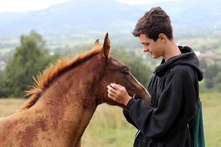 De jonge jongen tijdens het hoge opzetten het lopen ontmoet een jong paard en communiceert ermee, wilde aard, mensen en dierenvriendschapsconcept, levensstijl de zomer openlucht