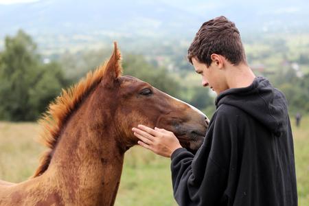 어린 소년 높은 장착 도보 중 젊은 말을 충족 하 고 그것, 야생 자연, 사람들과 동물 통신 우호 개념, 야외 라이프 스타일 여름