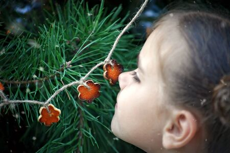 Cute school girl smelling crafted Christmas garland made from the skin of oranges, zero waste lifestyle, reuse and ecological decoration, focus on the garland