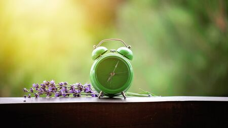 Close up of a green alarm clock with lavender flowers on the wooden table of a veranda over blurred green background, summer morning outdoor, concept