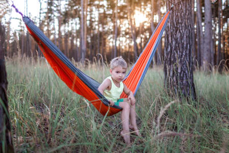Cute 5 years boy having rest in hammock in the wild forest during local vacation, family summer weekend, social distance lifestyle Banque d'images