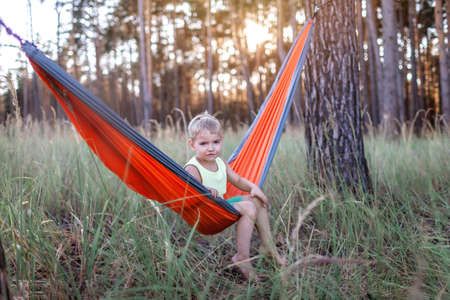 Cute 5 years boy having rest in hammock in the wild forest during local vacation, family summer weekend, social distance lifestyle Stock Photo