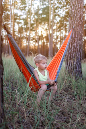 Cute 5 years boy having rest and playing on smartphone in hammock in the wild forest during local vacation, family summer weekend, social distance lifestyle