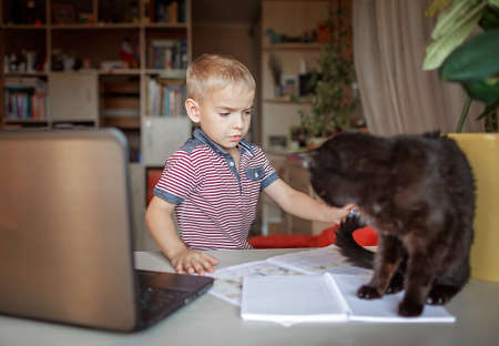 Distant education, online class meeting. 5-6 years school boy studying homework during his online lesson at home, but his cat sitting on copybook and interferes, true online education