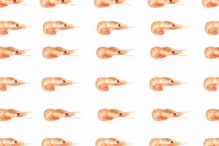 Shrimps pattern on white background flat lay