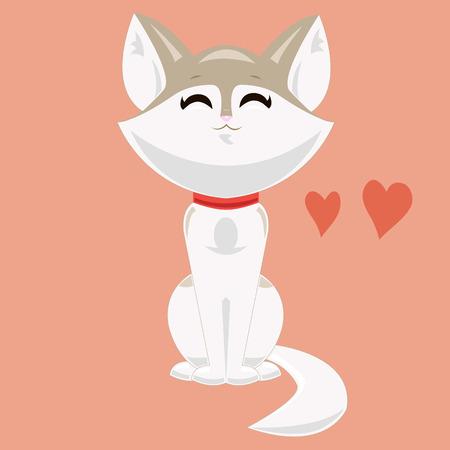 kitty: Cute whitebrown kitty