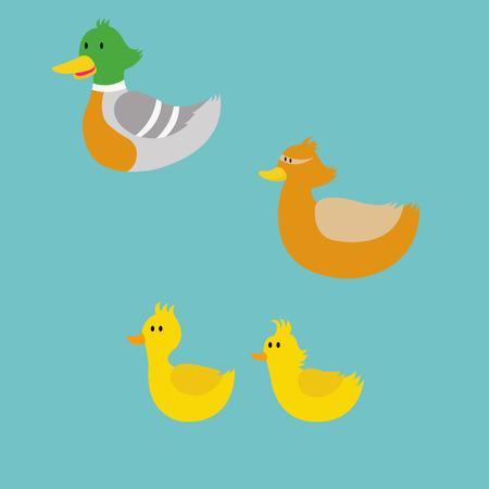 pato caricatura: Ilustración del vector de la familia de pato de dibujos animados: Pato-padre, pato de la madre y sus hijos