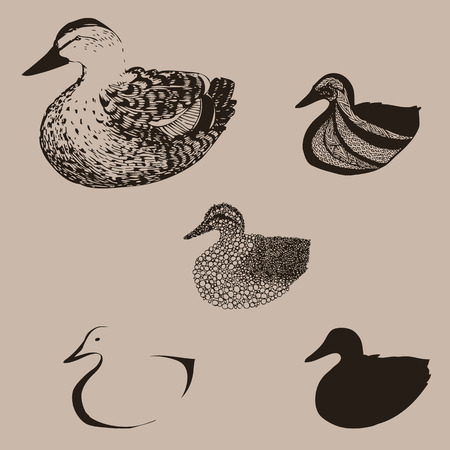 duck hunting: Duck transformed to different interesting forms Illustration