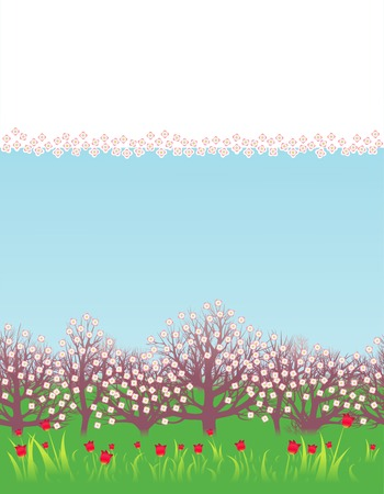 Flowerings fruit trees and tulips Illustration