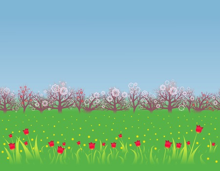 Flowerings fruit trees, red tulips and yellow dandelions  Illustration