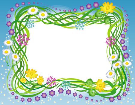 Cornice decorativa con i fiori di campo di erba ed estate  Vettoriali