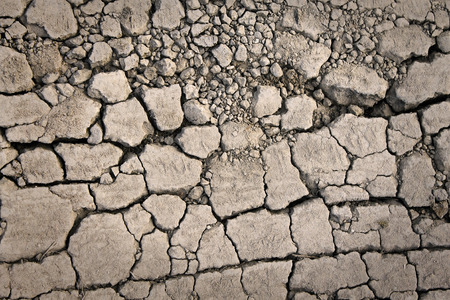 emaciated: Cracks on the dried ground