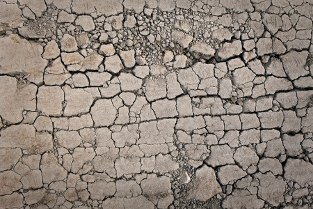 Cracks on the dried ground