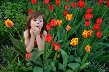 The little girl hides among the blossoming tulips