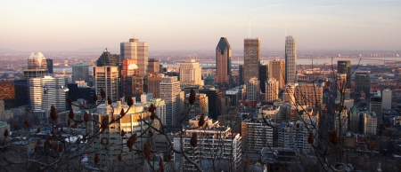 view over Montreal skyline in the late afternoon
