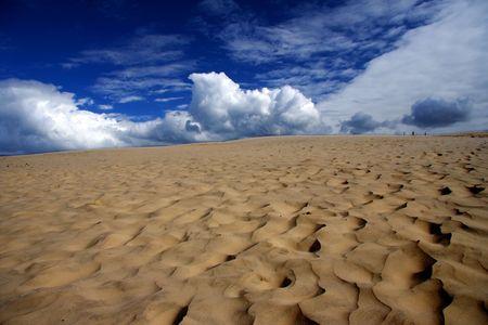 jutland: Desert and blue sky. the picture is from Raabjerg Mile, a small sandy desert in Denmark.