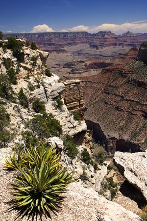 View down Grand Canyon from south rim, USA photo
