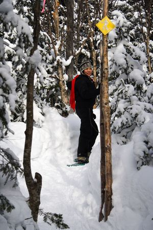Young woman snowshoeing in pine forest near Baie Saint-Paul, Quebec, Canada Stock Photo - 4190420