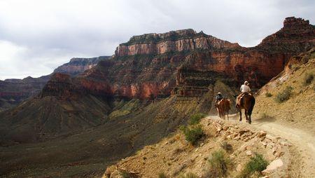 sentier: Centre �questre dans le Grand Canyon Banque d'images