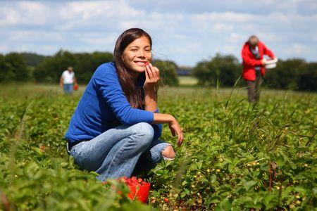 Mooie vrouw het eten van een aardbei, terwijl het verzamelen van aardbeien op een boerderij in Denemarken.