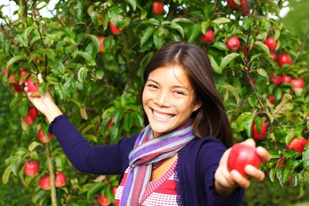 Smiling autumn woman picking and giving apples from tree.