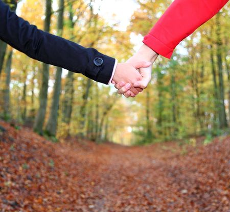 couple holding hands: Young couple holding hands in during a walk in the autumn forest. Closeup. Stock Photo